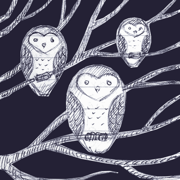 owls-sketch-photoshop